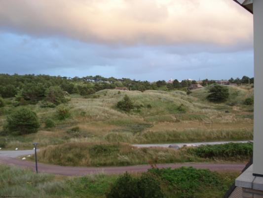 Uitzicht duinen en bossen vanuit het complex